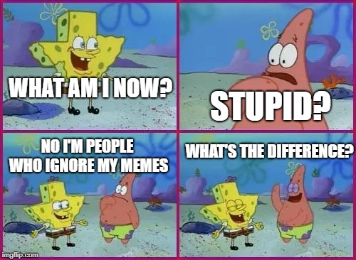 Spongebob What's the Difference? | WHAT AM I NOW? NO I'M PEOPLE WHO IGNORE MY MEMES STUPID? WHAT'S THE DIFFERENCE? | image tagged in spongebob what's the difference | made w/ Imgflip meme maker