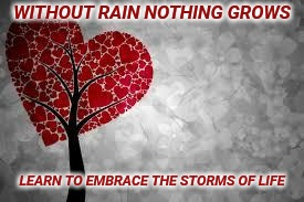 Tree heart | WITHOUT RAIN NOTHING GROWS LEARN TO EMBRACE THE STORMS OF LIFE | image tagged in tree heart | made w/ Imgflip meme maker