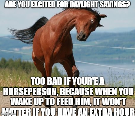 Good luck, horsepeople | ARE YOU EXCITED FOR DAYLIGHT SAVINGS? TOO BAD IF YOUR'E A HORSEPERSON, BECAUSE WHEN YOU WAKE UP TO FEED HIM, IT WON'T MATTER IF YOU HAVE AN  | image tagged in horse,daylight savings time,daylight savings,early,memes,funny | made w/ Imgflip meme maker