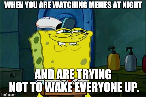 Dont You Squidward Meme | WHEN YOU ARE WATCHING MEMES AT NIGHT AND ARE TRYING NOT TO WAKE EVERYONE UP. | image tagged in memes,dont you squidward | made w/ Imgflip meme maker