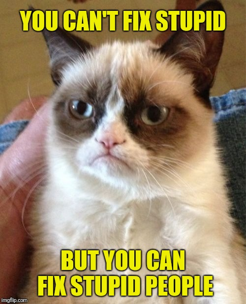 Grumpy Cat Meme | YOU CAN'T FIX STUPID BUT YOU CAN FIX STUPID PEOPLE | image tagged in memes,grumpy cat | made w/ Imgflip meme maker