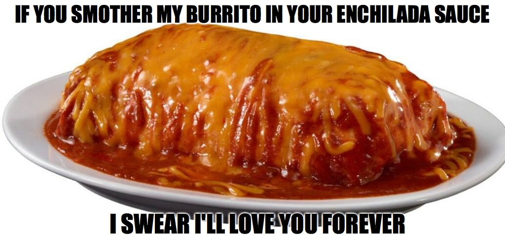 Burrito Mojado | IF YOU SMOTHER MY BURRITO IN YOUR ENCHILADA SAUCE I SWEAR I'LL LOVE YOU FOREVER | image tagged in burrito,wet,food,mexican food | made w/ Imgflip meme maker