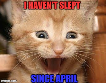 I HAVEN'T SLEPT SINCE APRIL | image tagged in memes,excited cat | made w/ Imgflip meme maker