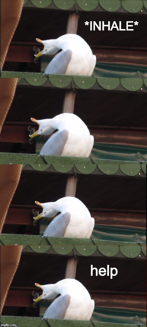 Inhaling Seagull | *INHALE* help | image tagged in memes,inhaling seagull | made w/ Imgflip meme maker