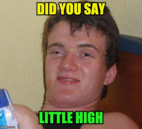 10 Guy Meme | DID YOU SAY LITTLE HIGH | image tagged in memes,10 guy | made w/ Imgflip meme maker