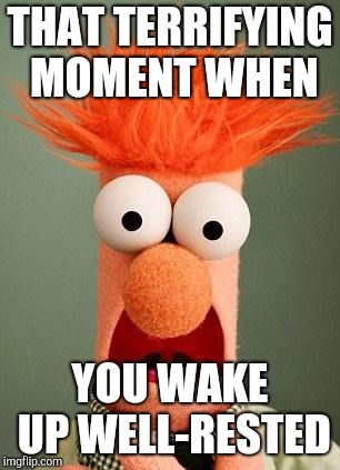 BEAKER | THAT TERRIFYING MOMENT WHEN YOU WAKE UP WELL-RESTED | image tagged in beaker | made w/ Imgflip meme maker