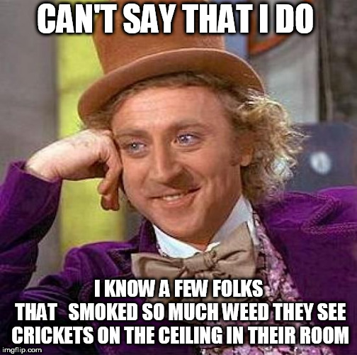 Creepy Condescending Wonka Meme | CAN'T SAY THAT I DO I KNOW A FEW FOLKS THAT   SMOKED SO MUCH WEED THEY SEE CRICKETS ON THE CEILING IN THEIR ROOM | image tagged in memes,creepy condescending wonka | made w/ Imgflip meme maker
