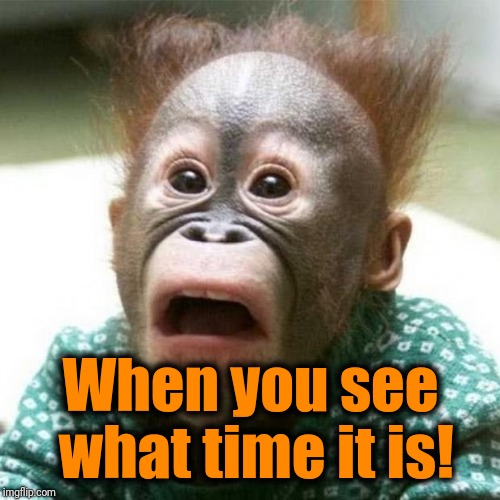 Shocked Monkey | When you see what time it is! | image tagged in shocked monkey | made w/ Imgflip meme maker