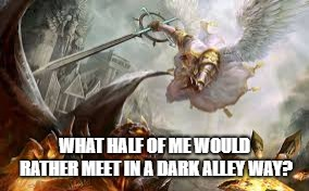 Half Sinner Half Saint You Decide | WHAT HALF OF ME WOULD RATHER MEET IN A DARK ALLEY WAY? | image tagged in angel,demon,vs | made w/ Imgflip meme maker