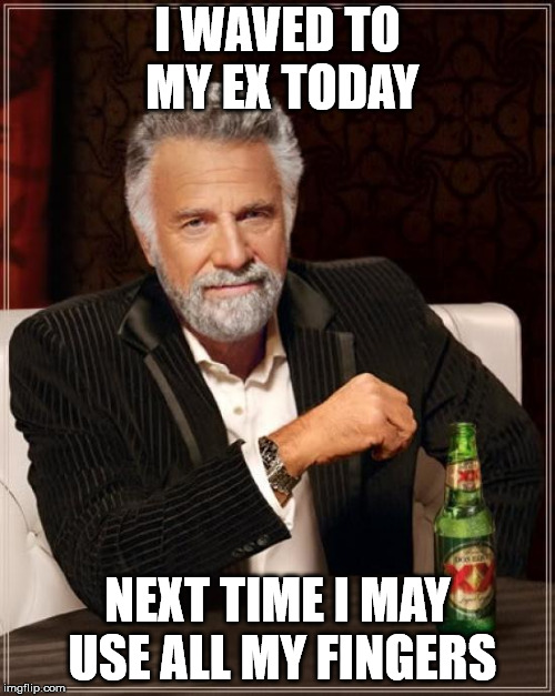 The Most Interesting Man In The World Meme | I WAVED TO MY EX TODAY NEXT TIME I MAY USE ALL MY FINGERS | image tagged in memes,the most interesting man in the world | made w/ Imgflip meme maker