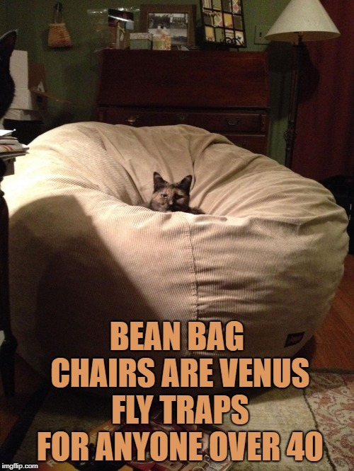 BEAN BAG CHAIRS ARE VENUS FLY TRAPS FOR ANYONE OVER 40 | image tagged in bean bag,funny,memes,funny memes | made w/ Imgflip meme maker