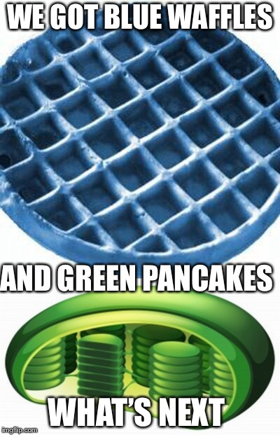 Green eggs and ham? Maybe? | WE GOT BLUE WAFFLES AND GREEN PANCAKES WHAT'S NEXT | image tagged in food,science,cell | made w/ Imgflip meme maker