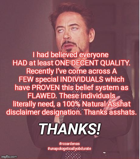 The Asshat Thanks | I had believed everyone HAD at least ONE DECENT QUALITY. Recently I've come across A FEW special INDIVIDUALS which have PROVEN this belief s | image tagged in memes,face you make robert downey jr,asshat,thanks,sarcasm,humor | made w/ Imgflip meme maker