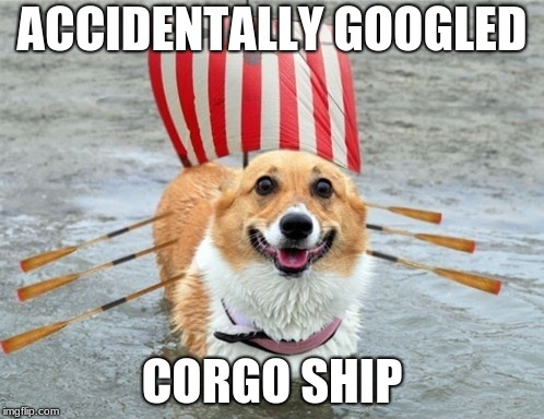 ACCIDENTALLY GOOGLED CORGO SHIP | image tagged in corgi,ship,doggo,google search | made w/ Imgflip meme maker