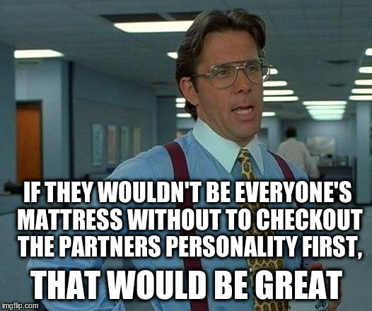 That Would Be Great Meme | IF THEY WOULDN'T BE EVERYONE'S MATTRESS WITHOUT TO CHECKOUT THE PARTNERS PERSONALITY FIRST, THAT WOULD BE GREAT | image tagged in memes,that would be great | made w/ Imgflip meme maker