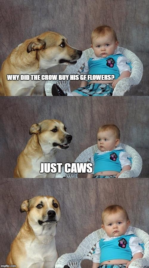 Crows |  WHY DID THE CROW BUY HIS GF FLOWERS? JUST CAWS | image tagged in memes,dad joke dog,crow,funny,funny memes | made w/ Imgflip meme maker