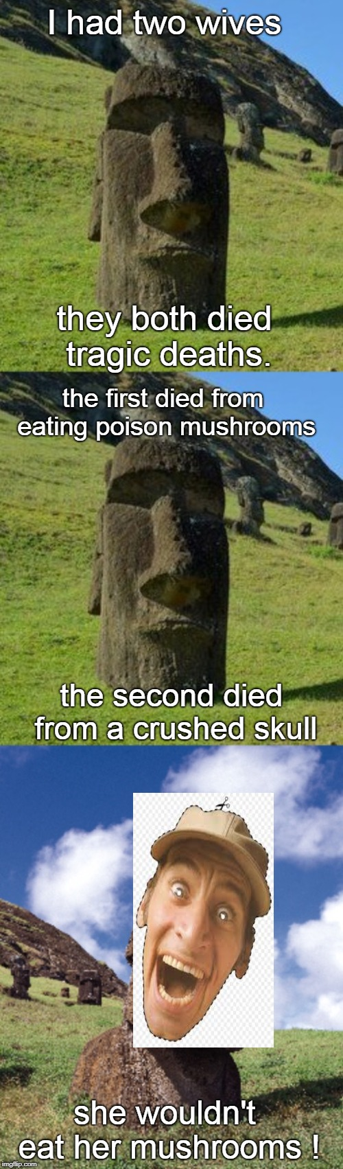 wives can be a problem if they get all difficult and finicky.mushroom time. | I had two wives she wouldn't eat her mushrooms ! they both died tragic deaths. the second died from a crushed skull the first died from eati | image tagged in bad pun moai,mushrooms,relationship are hard | made w/ Imgflip meme maker