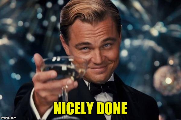 Leonardo Dicaprio Cheers Meme | NICELY DONE | image tagged in memes,leonardo dicaprio cheers | made w/ Imgflip meme maker