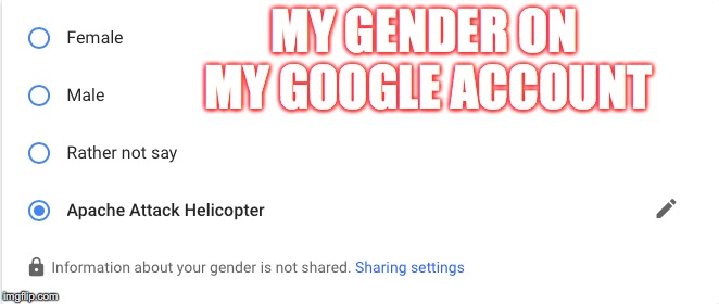 I Sexually Identify as an Apache Attack Helicopter.  Thanks google!( ͡ᵔ ͜ʖ ͡ᵔ ) | MY GENDER ON MY GOOGLE ACCOUNT | image tagged in politics,funny,there are only 2 genders,google | made w/ Imgflip meme maker