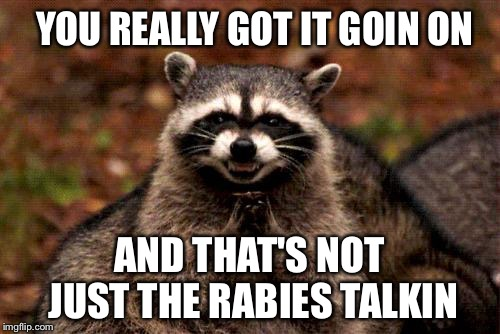 Raccoon Pickup Lines | YOU REALLY GOT IT GOIN ON AND THAT'S NOT JUST THE RABIES TALKIN | image tagged in memes,evil plotting raccoon,sexy chicken | made w/ Imgflip meme maker