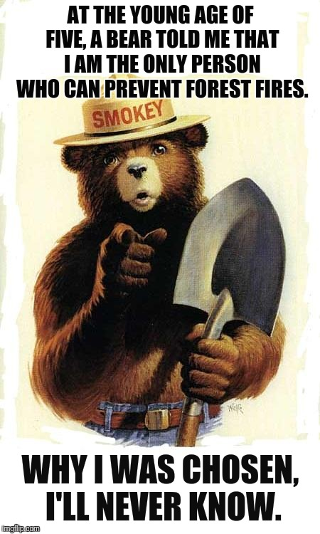 Smokey The Bear |  AT THE YOUNG AGE OF FIVE, A BEAR TOLD ME THAT I AM THE ONLY PERSON WHO CAN PREVENT FOREST FIRES. WHY I WAS CHOSEN, I'LL NEVER KNOW. | image tagged in smokey the bear | made w/ Imgflip meme maker