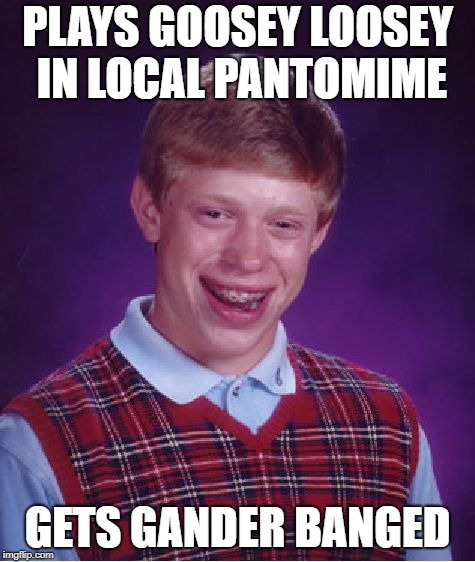 Bad Luck Brian Meme | PLAYS GOOSEY LOOSEY IN LOCAL PANTOMIME GETS GANDER BANGED | image tagged in memes,bad luck brian | made w/ Imgflip meme maker