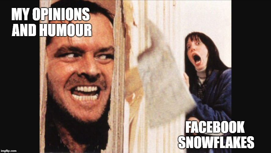 Here's johnny | MY OPINIONS AND HUMOUR FACEBOOK SNOWFLAKES | image tagged in here's johnny | made w/ Imgflip meme maker