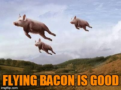 Pigs Fly | FLYING BACON IS GOOD | image tagged in pigs fly | made w/ Imgflip meme maker