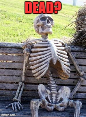 Waiting Skeleton Meme | DEAD? | image tagged in memes,waiting skeleton | made w/ Imgflip meme maker