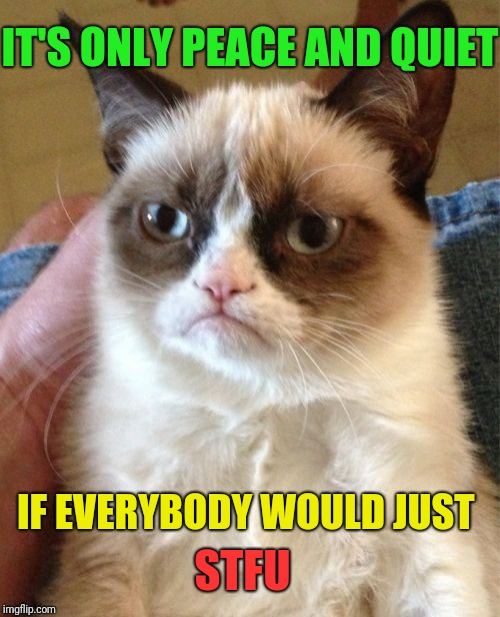 Grumpy Cat Meme | IT'S ONLY PEACE AND QUIET IF EVERYBODY WOULD JUST STFU | image tagged in memes,grumpy cat | made w/ Imgflip meme maker