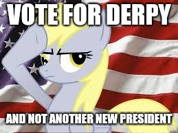 Patriotic Derpy Hooves | VOTE FOR DERPY AND NOT ANOTHER NEW PRESIDENT | image tagged in patriotic derpy hooves | made w/ Imgflip meme maker