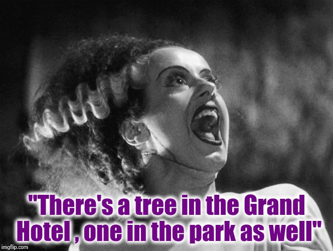 "The Bride of Frankenstein | ""There's a tree in the Grand Hotel , one in the park as well"" 