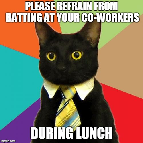 Business Cat | PLEASE REFRAIN FROM BATTING AT YOUR CO-WORKERS DURING LUNCH | image tagged in memes,business cat | made w/ Imgflip meme maker