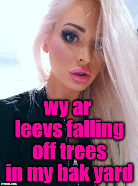 shrug | wy ar leevs falling off trees in my bak yard | image tagged in shrug | made w/ Imgflip meme maker