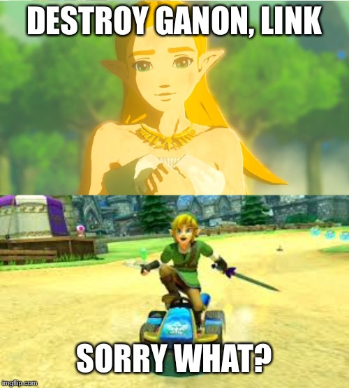 Can't complain for ever Zelda. Link needs some vacation too you know? | DESTROY GANON, LINK SORRY WHAT? | image tagged in legend of zelda,link,zelda,funny,memes,funny memes | made w/ Imgflip meme maker