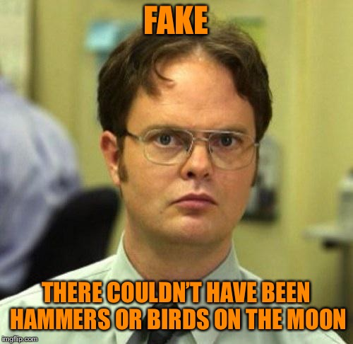 False | FAKE THERE COULDN'T HAVE BEEN HAMMERS OR BIRDS ON THE MOON | image tagged in false | made w/ Imgflip meme maker