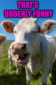 THAT'S UDDERLY FUNNY | made w/ Imgflip meme maker