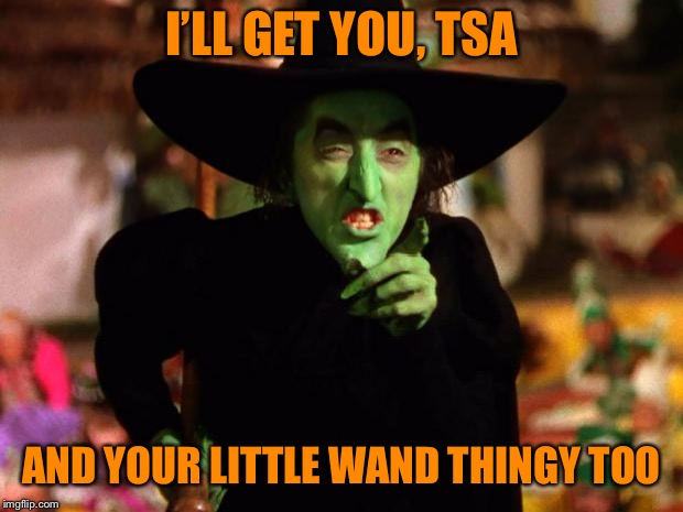 wicked witch  | I'LL GET YOU, TSA AND YOUR LITTLE WAND THINGY TOO | image tagged in wicked witch | made w/ Imgflip meme maker