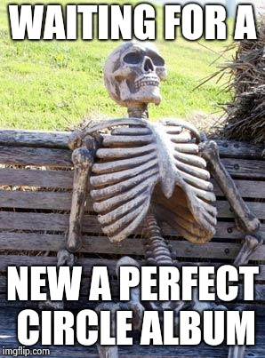 Waiting Skeleton Meme | WAITING FOR A NEW A PERFECT CIRCLE ALBUM | image tagged in memes,waiting skeleton | made w/ Imgflip meme maker
