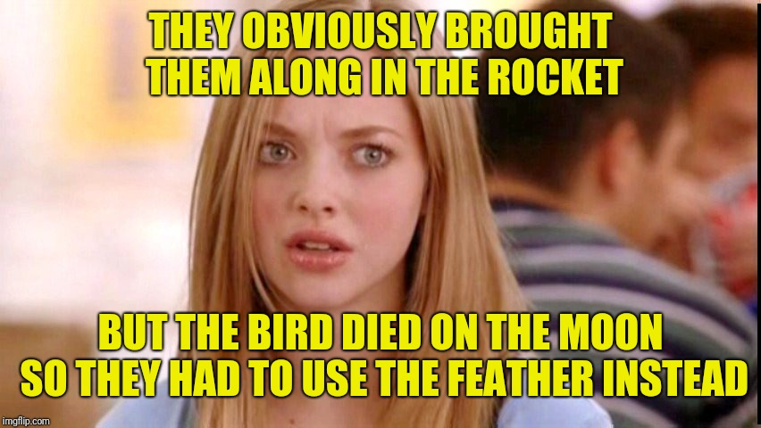 Dumb Blonde | THEY OBVIOUSLY BROUGHT THEM ALONG IN THE ROCKET BUT THE BIRD DIED ON THE MOON SO THEY HAD TO USE THE FEATHER INSTEAD | image tagged in dumb blonde | made w/ Imgflip meme maker