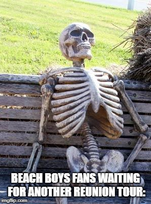 Waiting Skeleton Meme | BEACH BOYS FANS WAITING FOR ANOTHER REUNION TOUR: | image tagged in memes,waiting skeleton | made w/ Imgflip meme maker