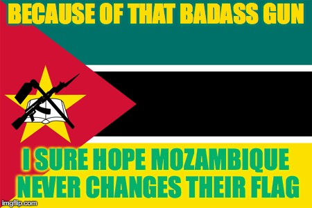 GUNZ | BECAUSE OF THAT BADASS GUN I SURE HOPE MOZAMBIQUE NEVER CHANGES THEIR FLAG | image tagged in mozambique,flags,flag | made w/ Imgflip meme maker