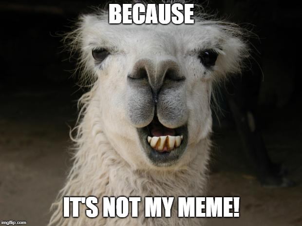 Because Llama | BECAUSE IT'S NOT MY MEME! | image tagged in because llama | made w/ Imgflip meme maker
