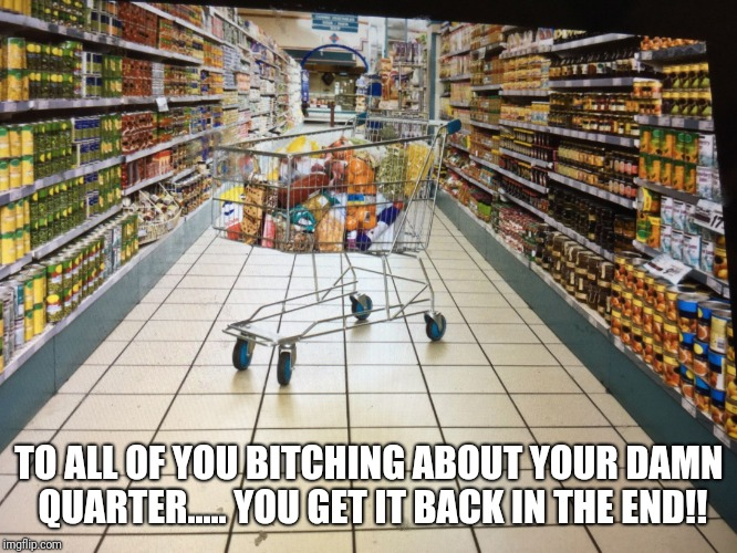 Grocery cart in aisle | TO ALL OF YOU B**CHING ABOUT YOUR DAMN QUARTER..... YOU GET IT BACK IN THE END!! | image tagged in grocery cart in aisle | made w/ Imgflip meme maker