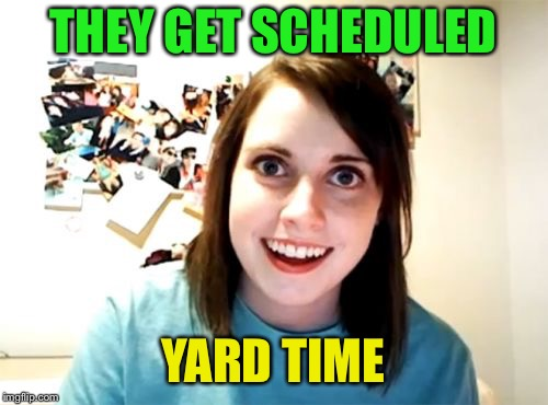 Overly Attached Girlfriend Meme | THEY GET SCHEDULED YARD TIME | image tagged in memes,overly attached girlfriend | made w/ Imgflip meme maker
