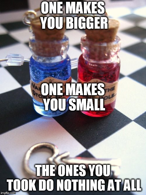 ONE MAKES YOU BIGGER THE ONES YOU TOOK DO NOTHING AT ALL ONE MAKES YOU SMALL | image tagged in wonderland red pill blue pill | made w/ Imgflip meme maker