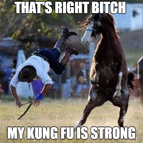 image tagged in kung fu,horse,funny | made w/ Imgflip meme maker