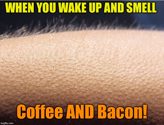 Wakin' and Bacon! |  WHEN YOU WAKE UP AND SMELL; Coffee AND Bacon! | image tagged in coffee,bacon,goosebumps,waking up,memes | made w/ Imgflip meme maker