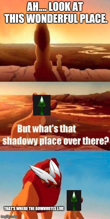 Don't go to the land of the Downvotes. Your memes will never survive it. | AH.... LOOK AT THIS WONDERFUL PLACE. THAT'S WHERE THE DOWNVOTES LIVE | image tagged in memes,simba shadowy place,downvote,upvote | made w/ Imgflip meme maker