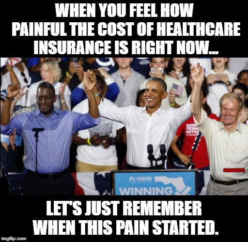 Credit where Credit is Due | WHEN YOU FEEL HOW PAINFUL THE COST OF HEALTHCARE INSURANCE IS RIGHT NOW... LET'S JUST REMEMBER WHEN THIS PAIN STARTED. PARADOX3713 | image tagged in barack obama,obamacare,democrats,corruption,depression sadness hurt pain anxiety,epic fail | made w/ Imgflip meme maker